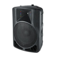 12 Inch 2 Way Stage Speaker Box