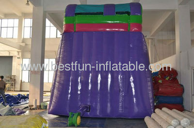 2013 New Hot Inflatable Ripcurl Slide