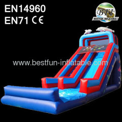 18' Dolphin Inflatable Slide