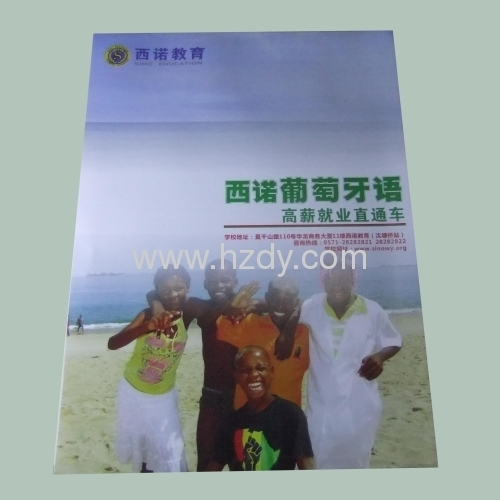 4 color printed pamphlet for products brochure Saddle Finish