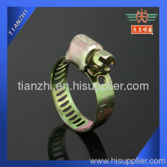 Miniature worm gear hose clamp
