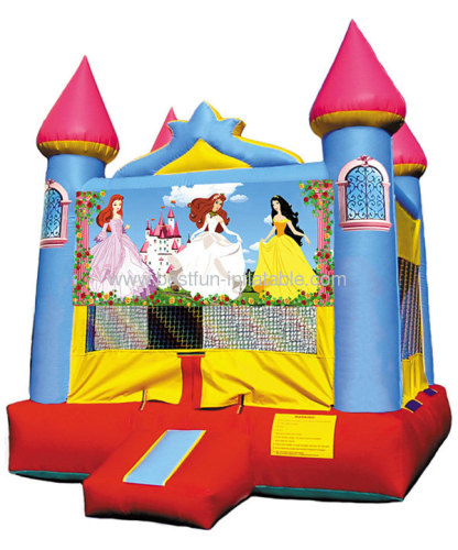 Princess Blue Castle For Sale