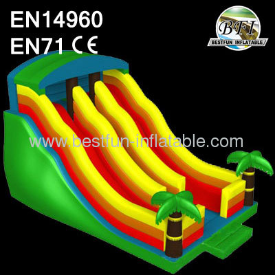 Dual Lanes Inflatable Slides
