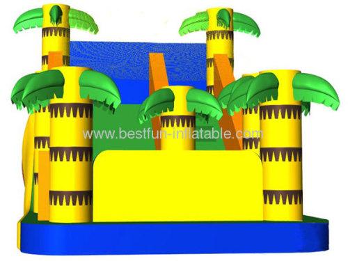 Backyard Dry Inflatable Palm Slide