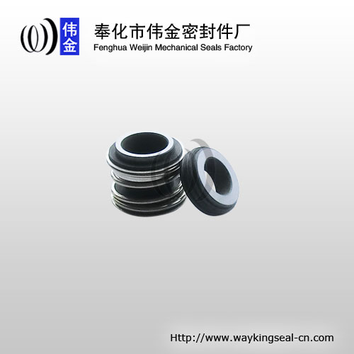 burgmann MG1 mechanical seal 12mm SIC / SIC