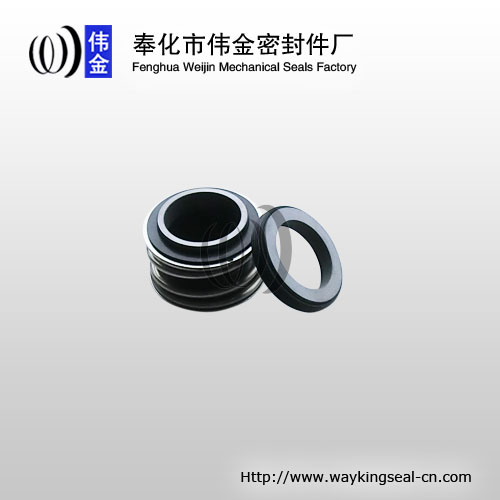 burgmann MG1 mechanical seal 35mm Carbon / SIC