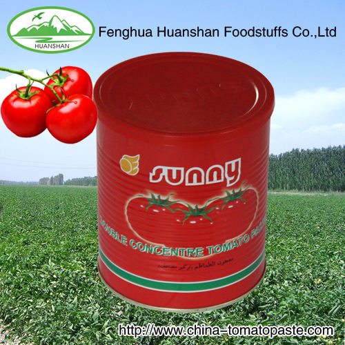 28-30% Brix Tomato Pastefor African market