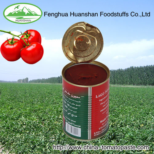 18-20% canned good quality tomate paste from factory
