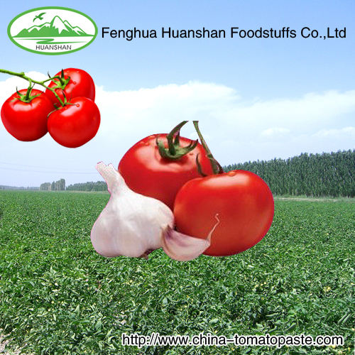 canned lithographic plain light red tomato paste