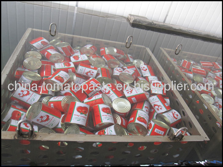 28-30%canned tomato pure to north america market