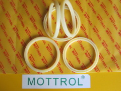 Rod Seal IDI ISI 35*45*6
