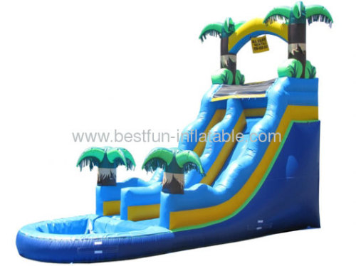 Inflatable Fancy Water Slide