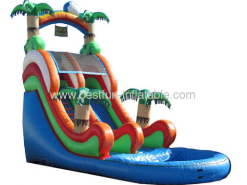 Palm Tree Water Slide