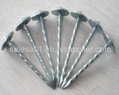 Umbrella Roofing Nails/Roofing nails with umbrella head