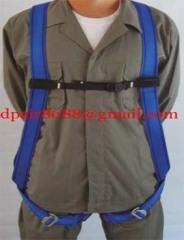 Security belt body harness