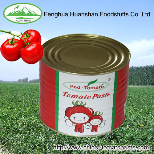 for African market 28-30% Brix Tomato Paste