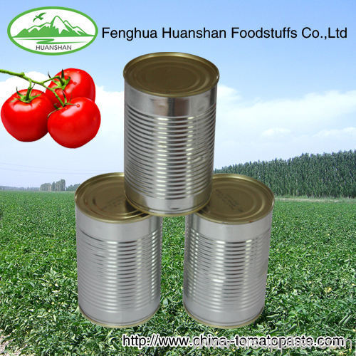 340g*48tins high quality canned tomato paste to MIAMI port