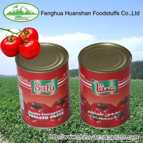 north america market 28-30%canned tomato pure bright colour