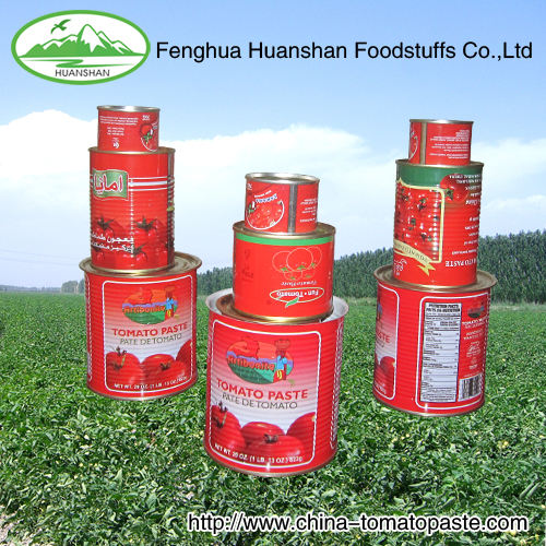 Halal Pizza canned Tomato Sauce 400g*24tins/CTN