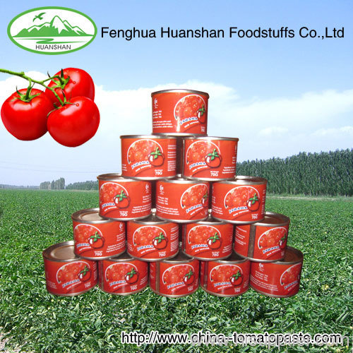 all specifications canned Tomato Paste Ketchup Tomato Sauce