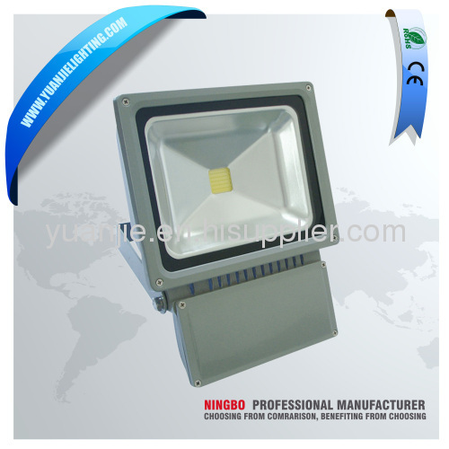 50W IP65 LED Floodlight