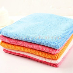 30cm x 30cm All Purpose Microfiber Cloth