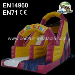 Commercial Pink Inflatable Dry Slide