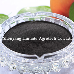 Potassium Humate-Soluble Organic Powder Fertilizer