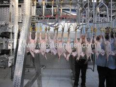Chicken processing equipment chicken plucking machine