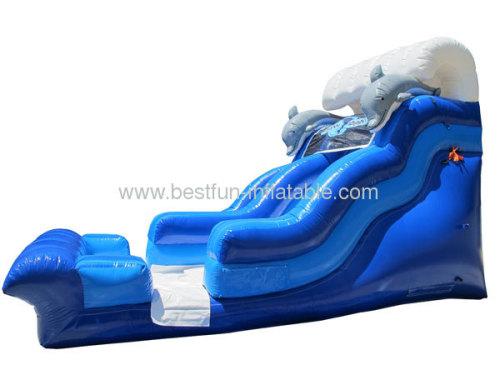 Dolphin Flipper Dipper Slide