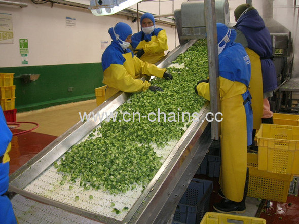 Flexible conveyor systems 2400Zdaily chemical industry, automobile industry