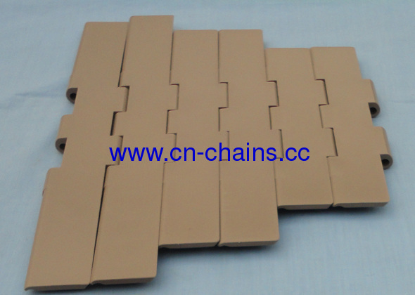 Table top double hinge plastic conveyor chains (RW821-K750)