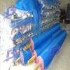Blue Nylon Mosquito Net