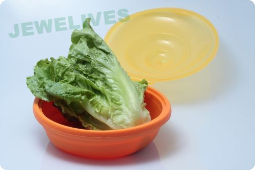 Outdoor Silicone Folding bowls