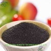 Seaweed Extract Powder Fertilizer