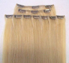 chip in hair extension/ chip on hair extension