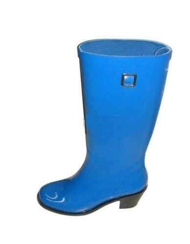 Ladies' Rain Boots In Blue