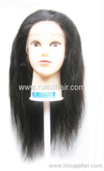 100% human virgin remy indian full lace wig