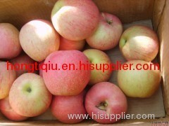 fresh shaanxi gala apple