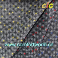 Car Fabric with printed design