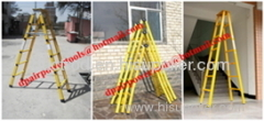 Single step extension FRP ladder
