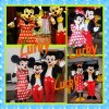 2013 New design high quality mascot costumes