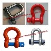 Price Stainless steel shackle,manufacture D- Shackle