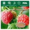 raspberry pi Extract herbal extract