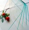 3mm polycarbonate sheet/ board