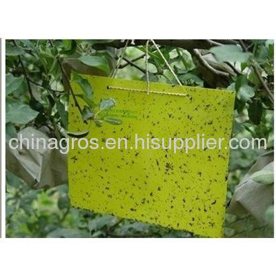 Thrips Whitefly Glue Paper ,Thrips Whitefly Glue TRAPS ,Stick Insect Yellow BLUE Board/sticky Paper