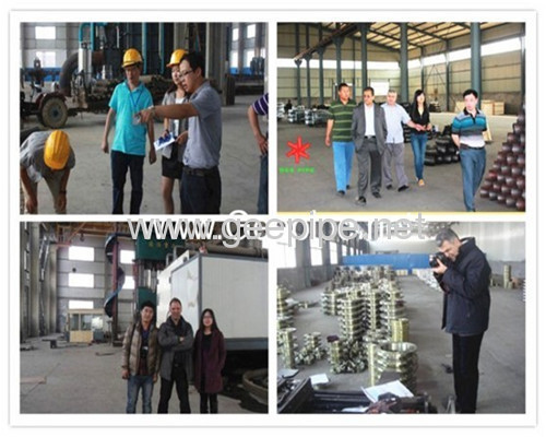 china forged seamless alloy steelthreaded flange