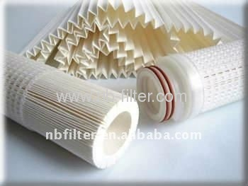 Absolute Rated PP Pleated Membrane Filter