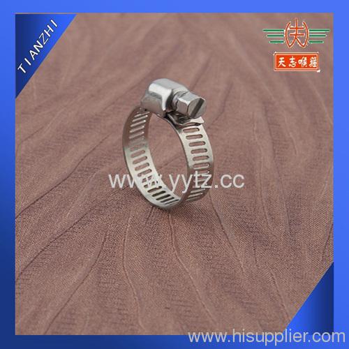 Miniature Worm Gear Clamp