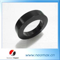 Large radial magnetized ring magnet